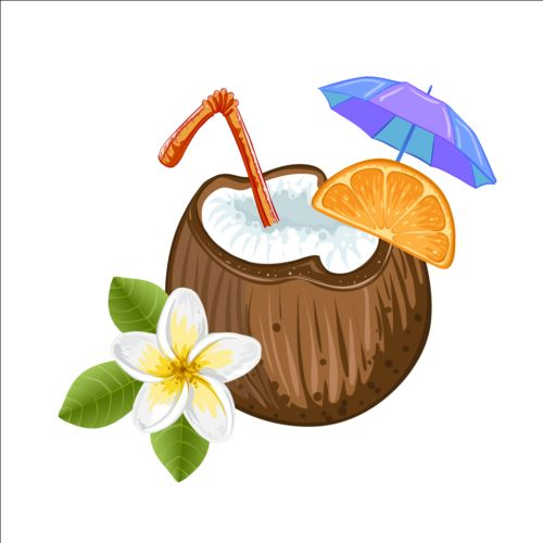 Coconut Milk Drink Vector