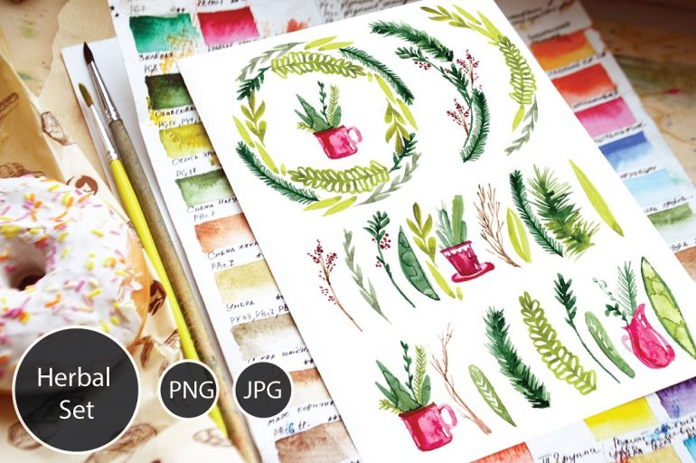 Herb / Plant Watercolour Graphic Set and Seamless Patterns