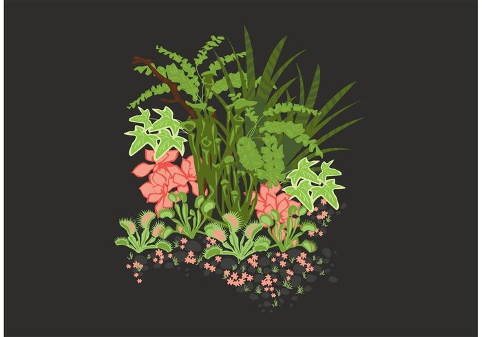 Garden Plants Illustration
